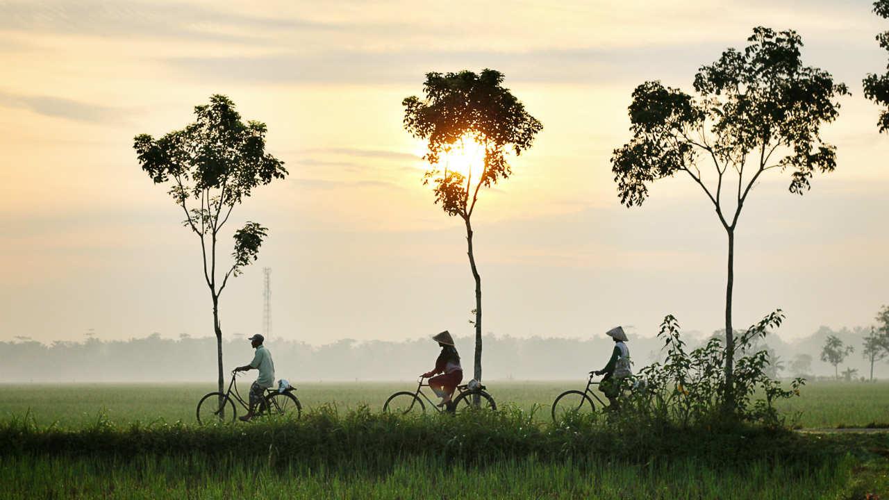fietsen in Indonesië